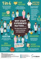 why staff experience matters infographic